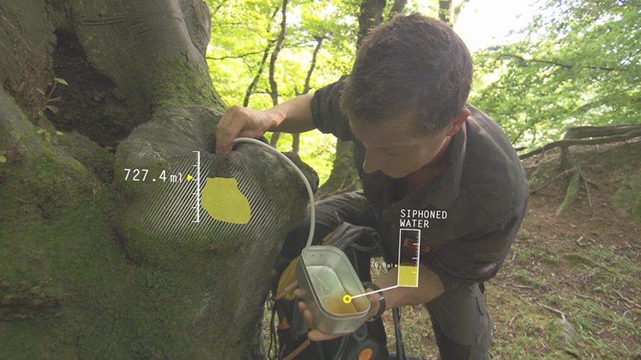Bear Grylls gfx7 & 14 tree water